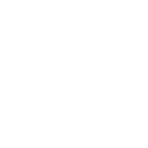 InScreen & Stress Transparent